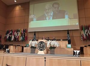ILO -Annual International Conference