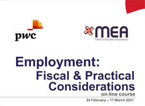 Employment: Fiscal & Practical Considerations Course