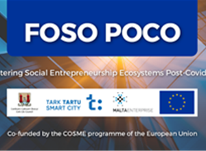 Intra-regional learning: Fostering Social Entrepreneurship in Malta, Estonia and Ireland