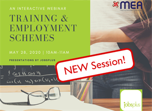 Extra Webinar on Training & Employment Schemes